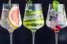Recettes GIN