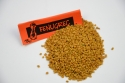 Fenugrec grains