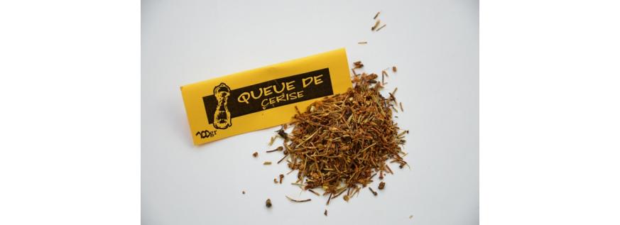 Queue de cerise en vente sur Epices and love Belgique